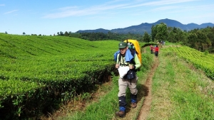 outbound-bandung-hiking