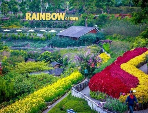 7 Lokasi Outbound Asyik dengan Suasana Asri di Lembang