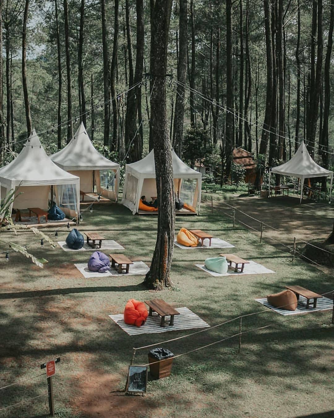 tempat-outbound-lembang-orchid-forest