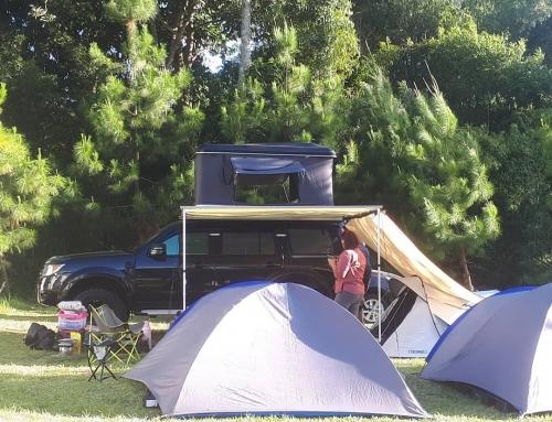 Pine Forest Camp, Tempat Camping Hits di Lembang